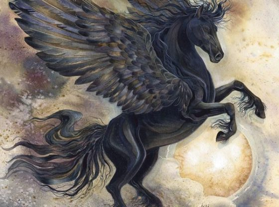 Szombati Pegazus Üzenet - Fogadd el a jót úgy, ahogyan eléd tárják az Égiek!