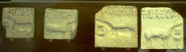 Indus-völgyi unikornisok