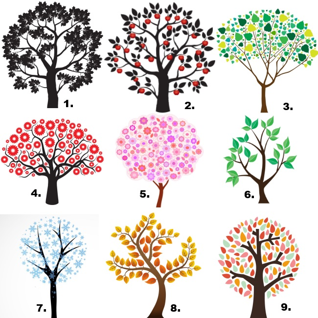 A 9 angyalfa megmutatja, ki vagy