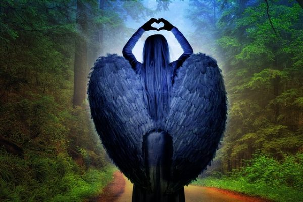 A Fa földangyal minden létezőben összhangba hozza a kozmikus és földi energiákat az egyén igényeinek megfelelően